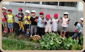 オリーブ幼稚園について